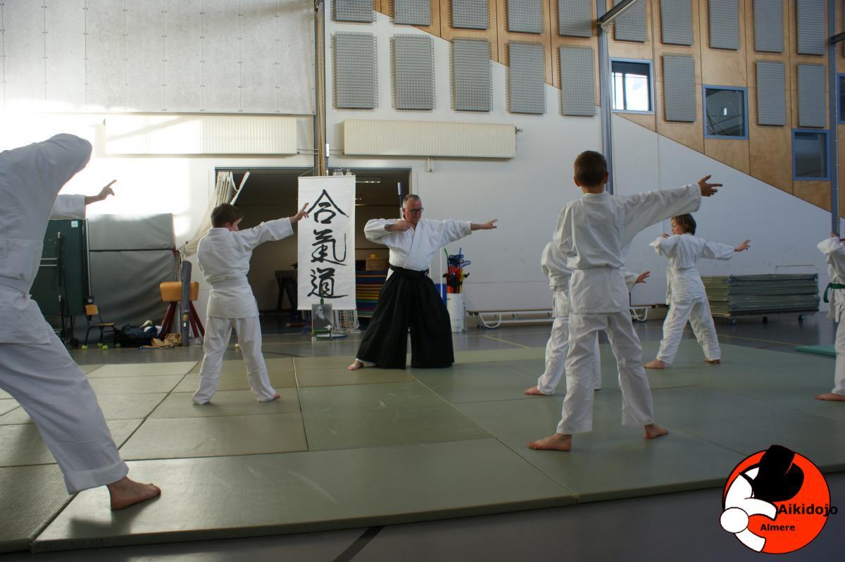 Aikidojo 2017-04-10 19-15-10