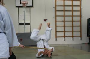 Aikidojo 2017-04-10 18-45-13